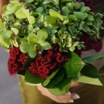 Late Spring - Fall:  apple green, red wine