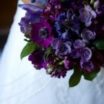 Spring:  purples