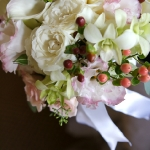 Available yearly:  pinks and whites