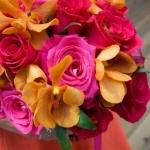Available yearly.  fuchsia, hot pink, orange