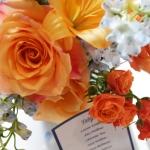 Spring /  Image by Sedonabride.com