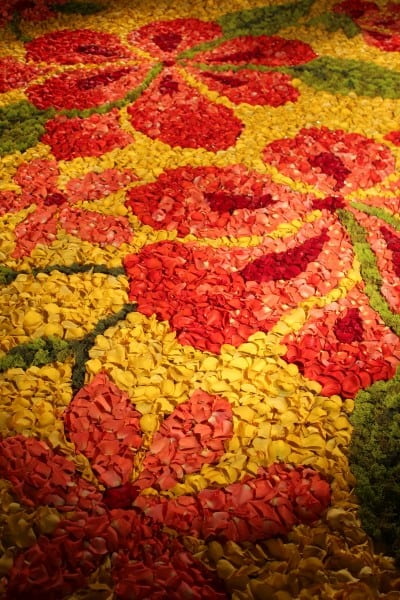 green carpet design rose petal carpets sedona wedding planners florists and event